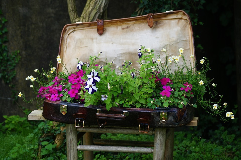 flower-bed-in-luggage