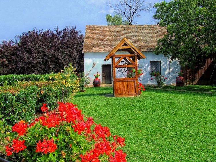 cottage-lawn
