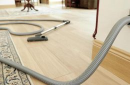 entral_vacuum_cleaner_hose