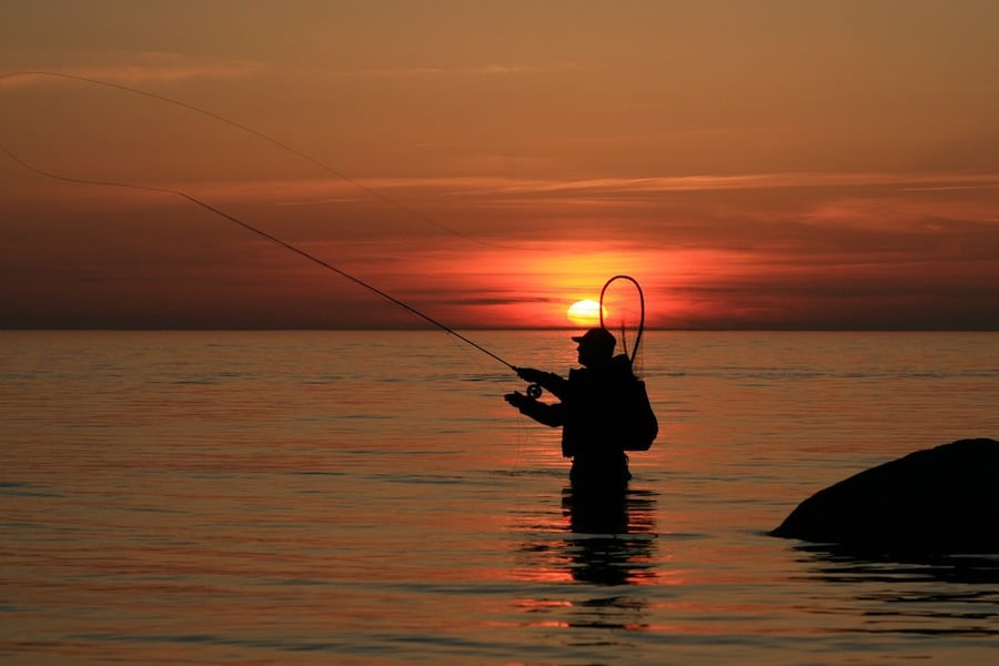 fly fishing sunset