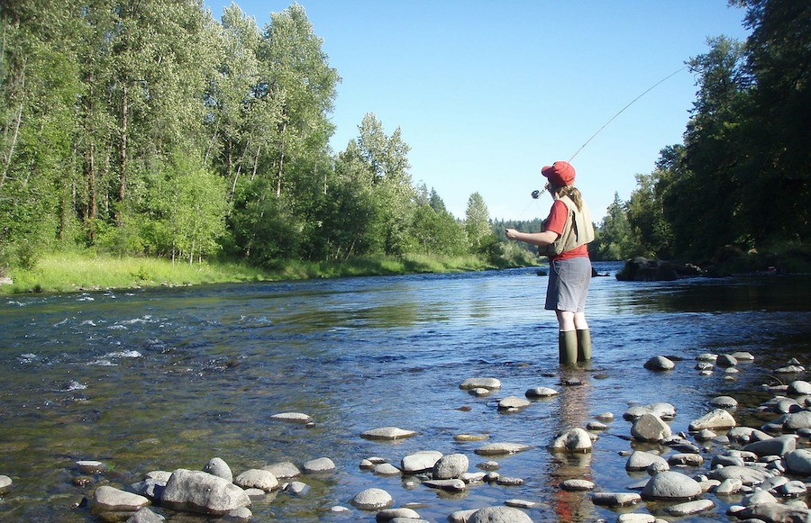 using a fly fishing rod