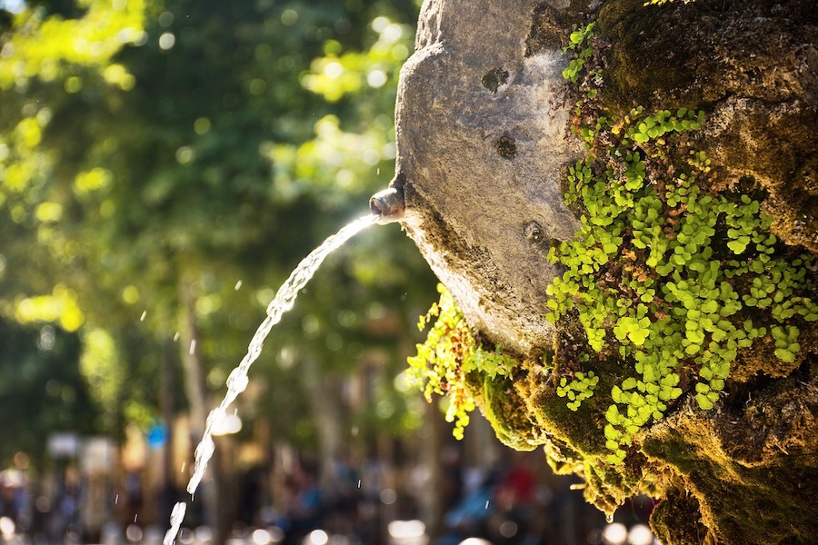 water fountain and garden