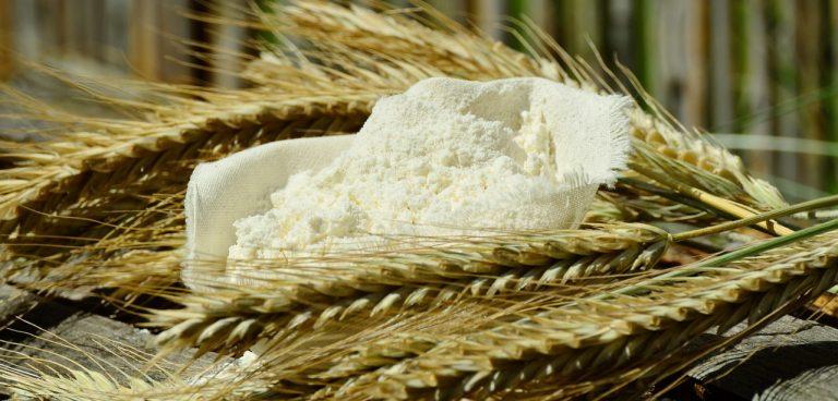 powder filling machine - flour and corn seeds