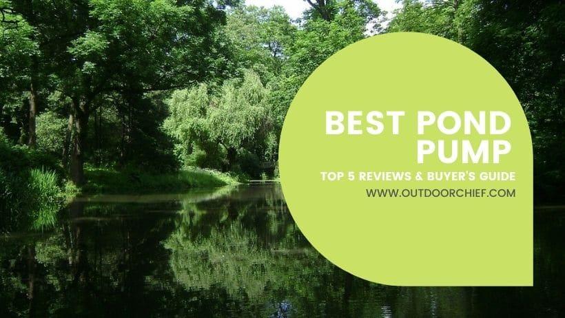 best pond pump