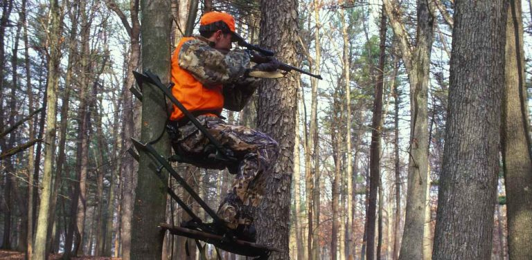 best tree stands for hunting