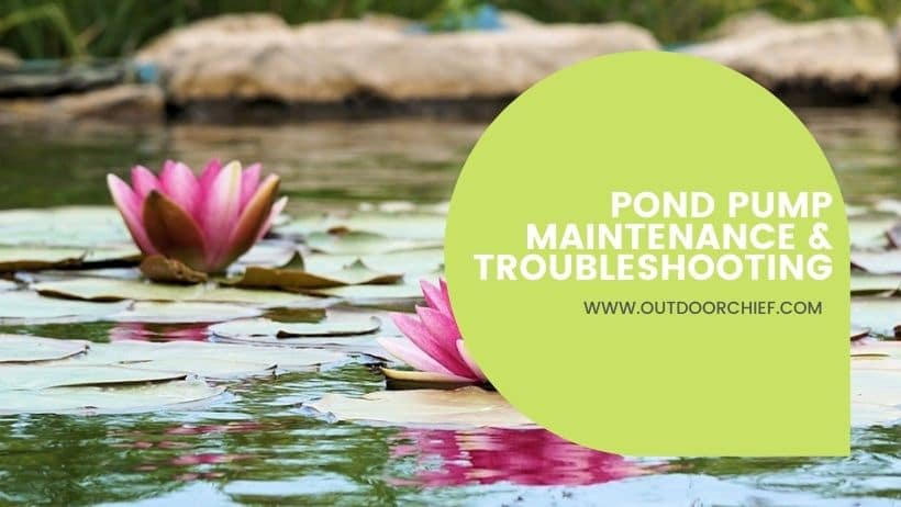 Pond Pump Maintenance