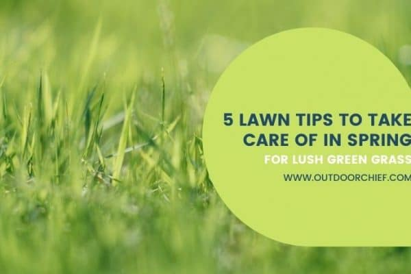 spring lawn tips (1)